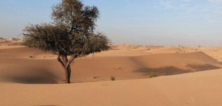 Location de jet privé à Abou Dabi