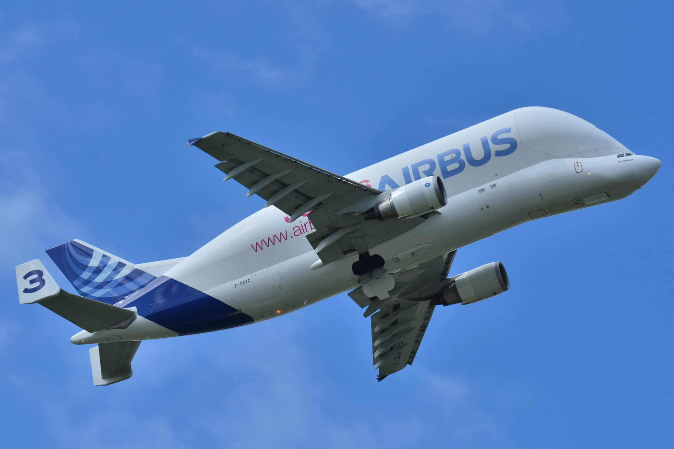 avion beluga en vol